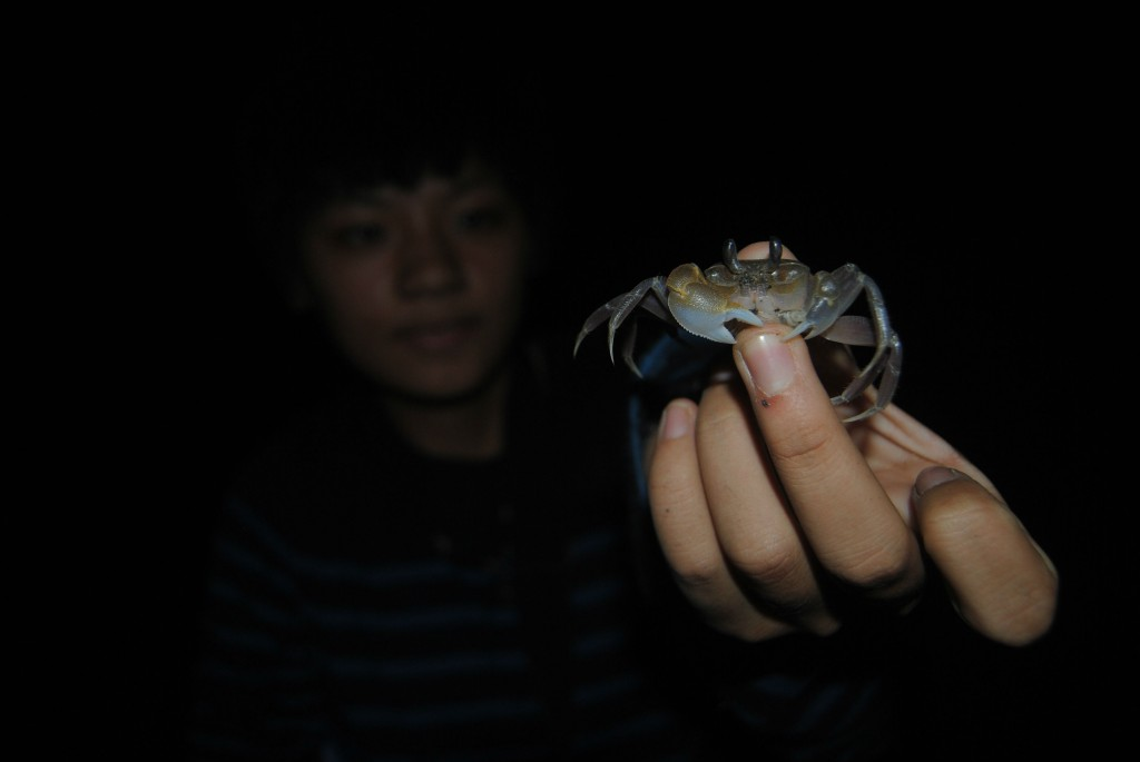 Crab at Boat Burning Festival