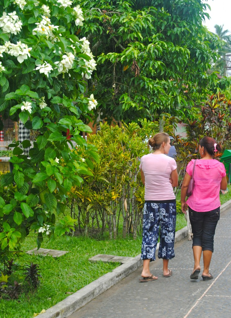 Strolling With Our Host