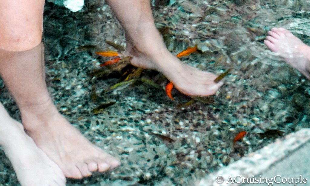 Taiwanese hot springs the ultimate guide to taiwan 39 s for Fish cleaning feet