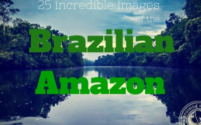 25 Incredible Images from the Brazilian Amazon