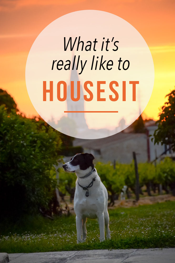 House sitting in the south of france what it was really like for House siting