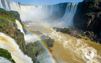 Iguazu Falls Brazil | Witnessing the Power of Nature In Photos