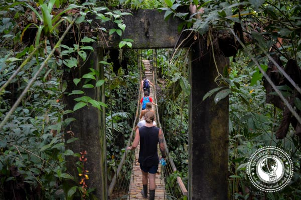 What It's Like To Sleep In The World's Only Treehouse Community | Finca Bellevista