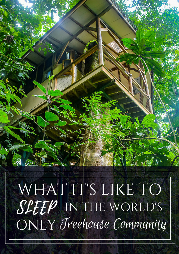 Finca bellavista costa rica treehouse community
