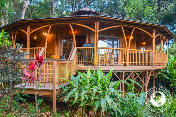 The Ultimate Glamping Getaway In Maui