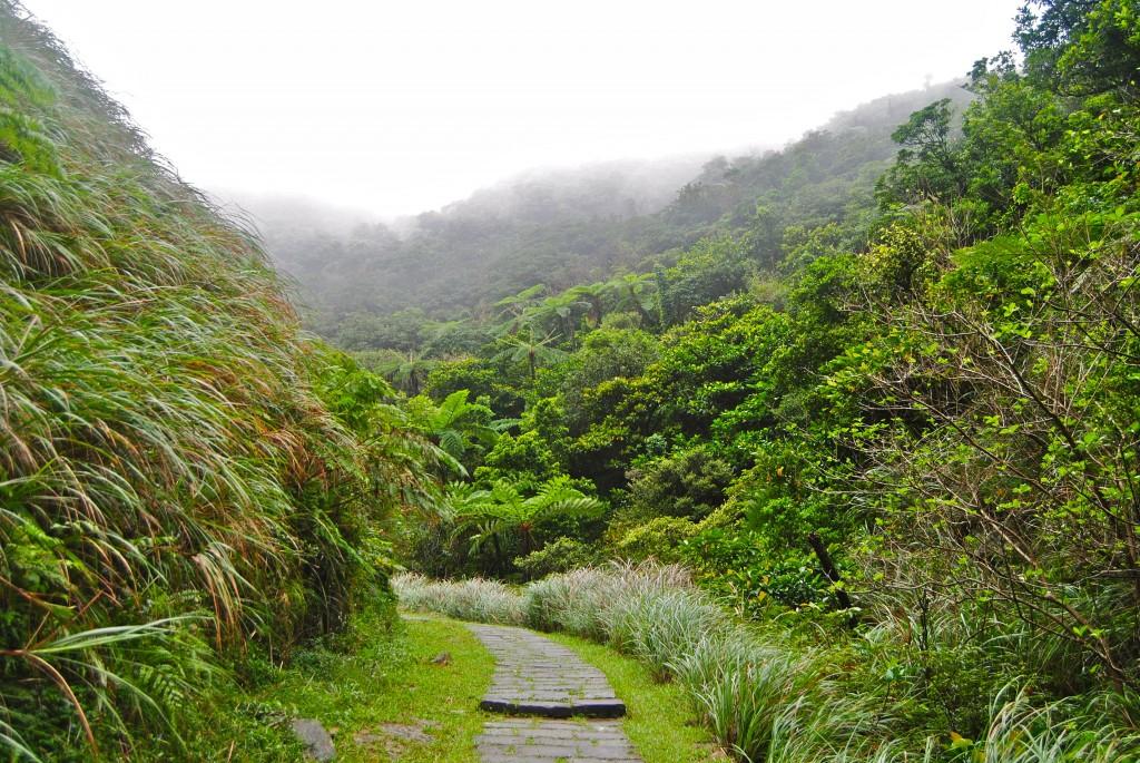 Coaling Historic Trail