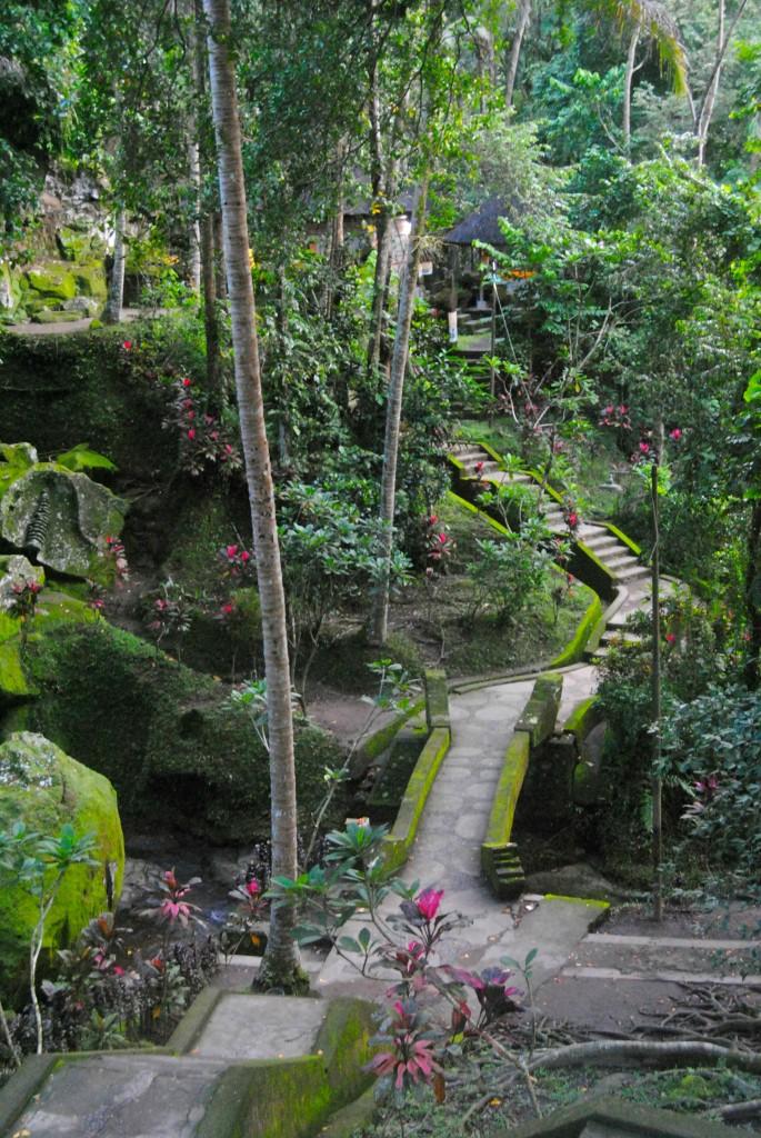 Forest Path, Ubud, Bali