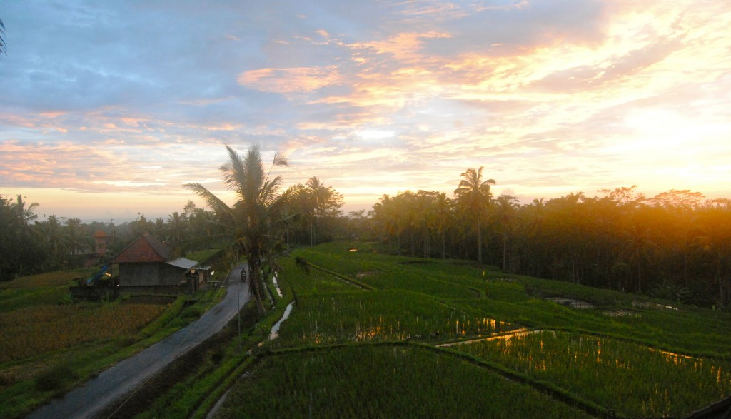 Homestay Sunset, Ubud, Bali