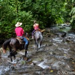 La Fortuna Waterfall: A Journey of Three Horses