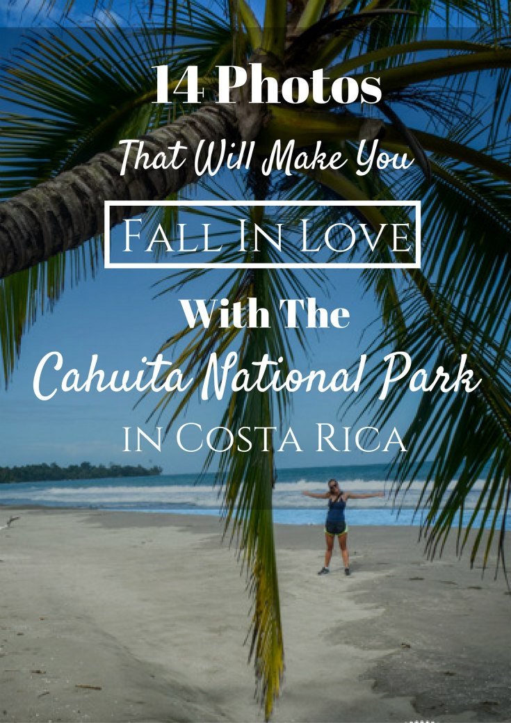 Why You Need To See Cahuita National Park- A Photo Essay