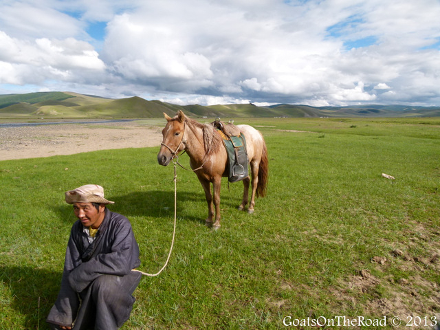 mongolian man and horse