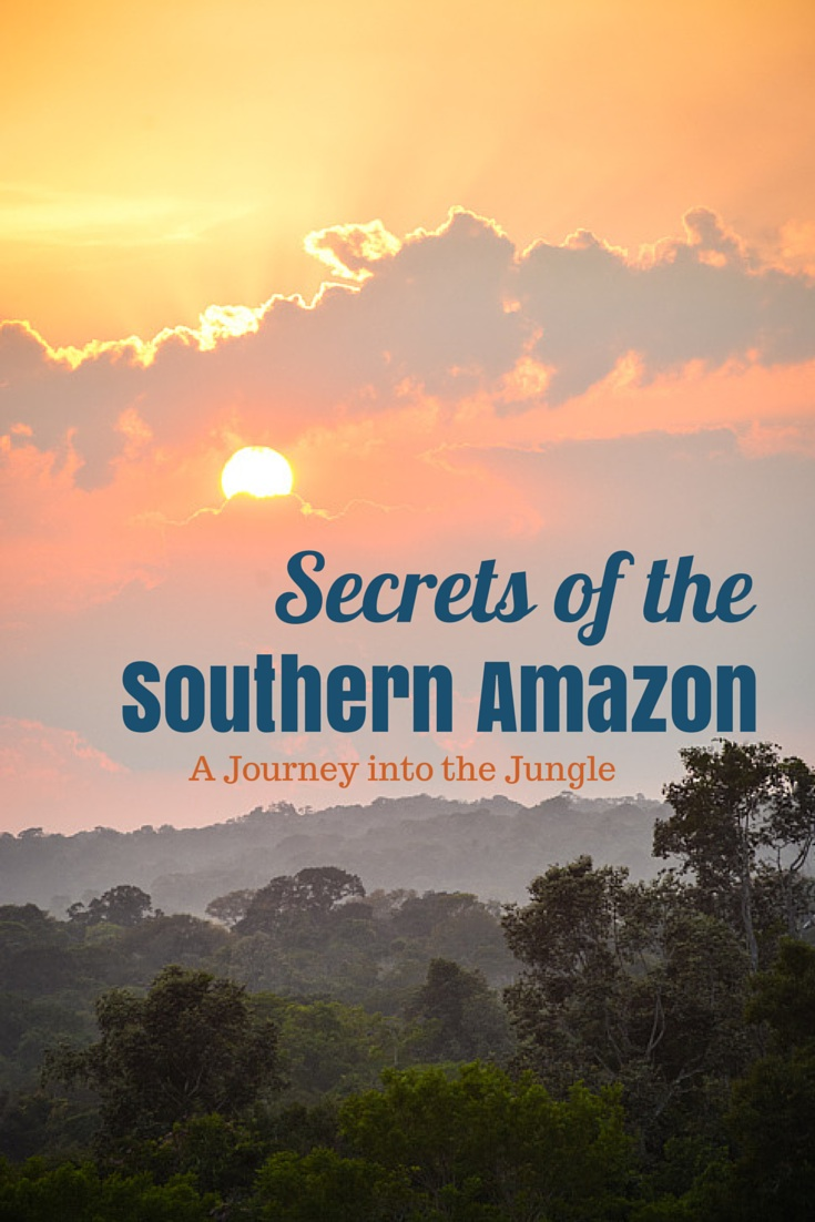Secrets of the Southern Amazon | A Journey into the Jungle