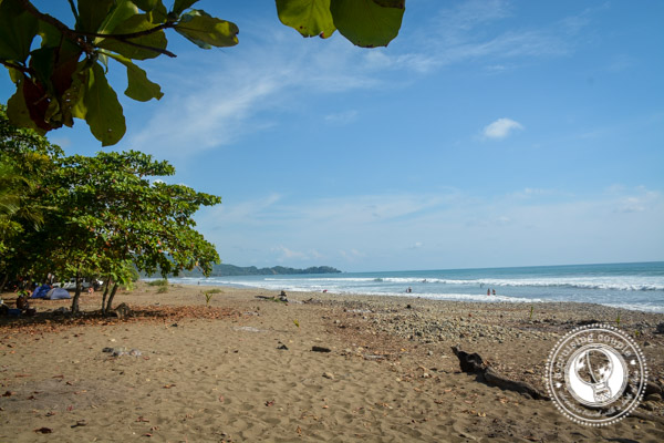 A Preview Of Life In Dominical, Costa Rica