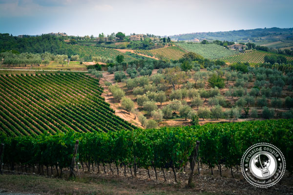 Sunday Snapshot | A Trip Through The Tuscan Countryside | Italy