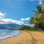 Why You Should Pick Hawaii for Your Next Vacation